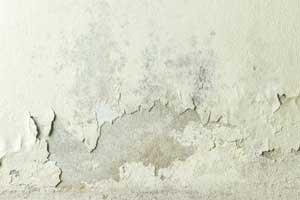 feuchtwand-sanierung-saniersysteme-innen