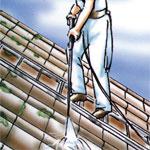Dach reinigen