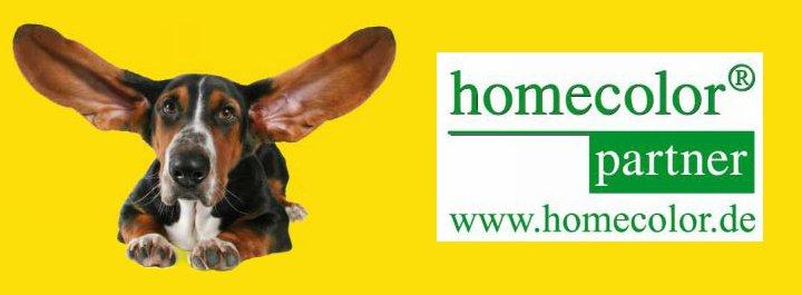 homecolor partner