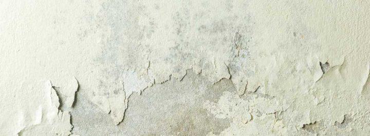 feuchte Wand mit Putzschaden